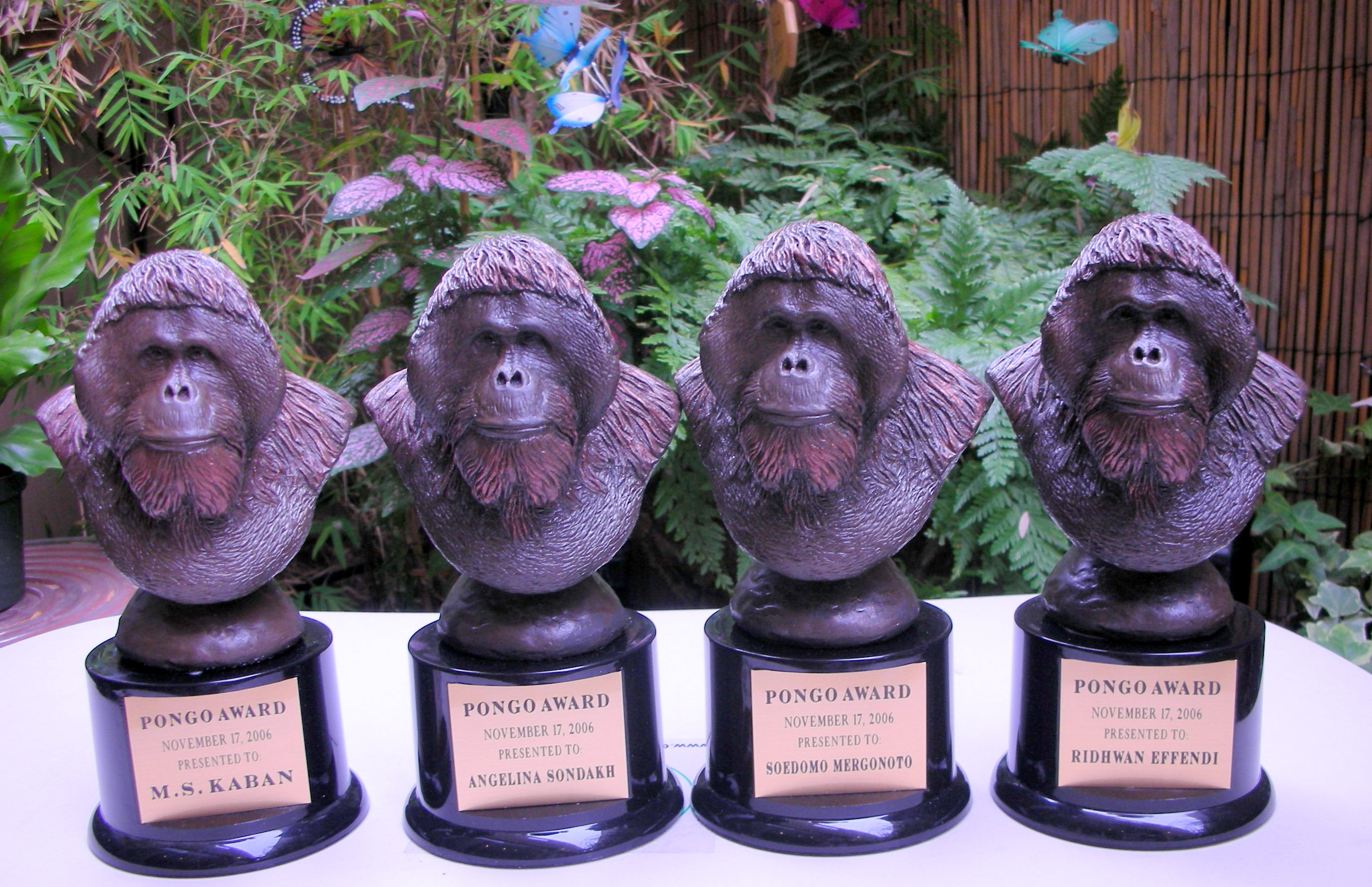Pongo Awards